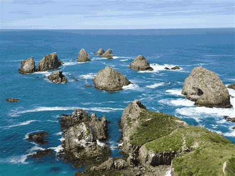 Zealandia: Everything You Need to Know About Earth's