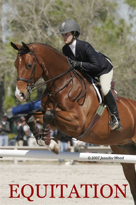Black Star Equestrian - Sales and Consignment