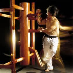 Chinese Kung fu-Wing Chun - Kung Fu Chinese Culture - Page