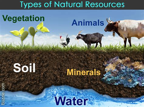 Natural resources of Writing Task 2 - IELTS Development